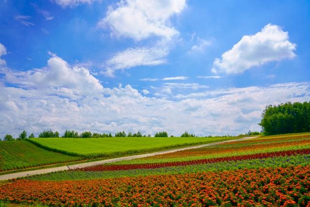 """NHK朝ドラ『なつぞら』 9月6日 (第23週「なつよ、天陽くんにさよならを)感想 『大草原の小さな家』は""""原案""""にイヤ―な予感"""